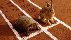 slow-steady-wins-race